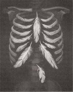 Wishbone