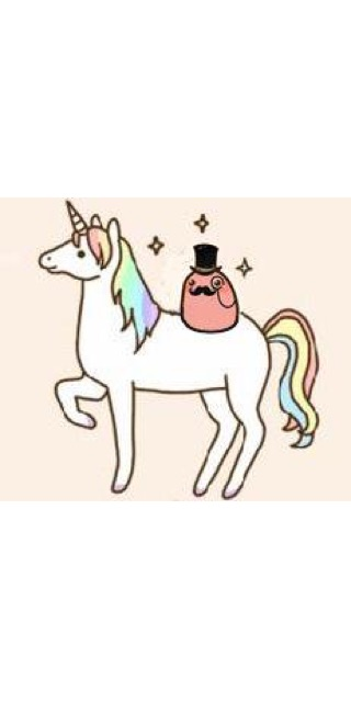 cat riding unicorn